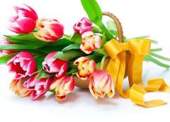 C праздником Весны — 8 Марта!